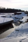 Ice along the banks of the Red Deer River