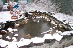 March 31, 2004 - The pond awaits.  The ice has thawed.  I just need to repile the rocks and top up the water.