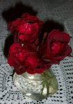 July 20, 2004 - Another spray of roses, these from the Don Juan climbing rose.  They remind me of the ruffled skirts of Spanish dancers.