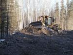 Bulldozer replacing top soil containing woody debris