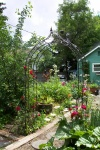 Jne 2, 2005 - The view from the back of the garden, with the roses growing up the wrought iron trellis.