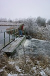 November 6, 2005 - Naturalist Wayne Roberts walks across the dam to pick up traps.
