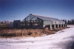 Alberta has the benefit of lots of sunshine, especially during the long summer days, which is a plus for greenhouse growers