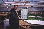 Dr. Mirza shows off hydroponic roots of East Indian plant grown in experimental greenhouse trials